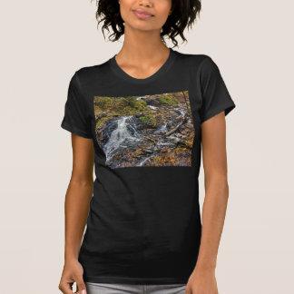 Chester Creek Tshirts