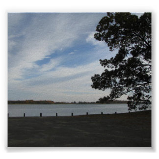 Chester River Posters