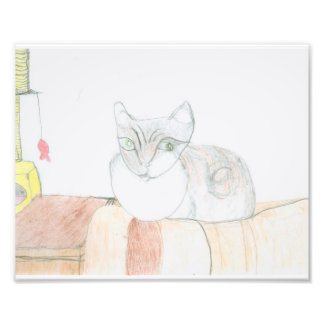 Chester the Cat 8x10 Photo Print