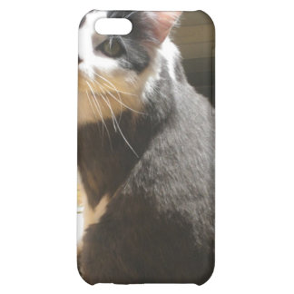 Chester the cat_sitting at the door iPhone 5C cases
