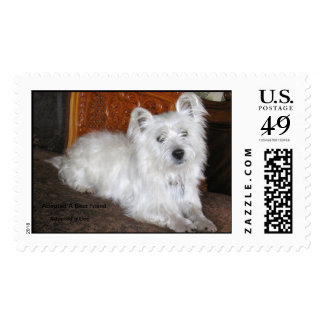 Chester The Westie Postage