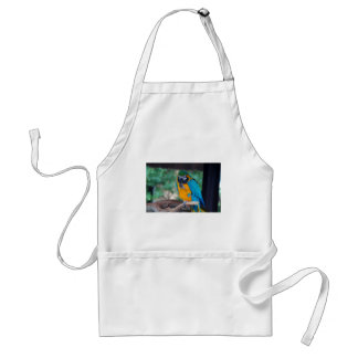 Chester VI Adult Apron