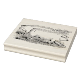 Chester White Hogs Vintage Rubber Art Stamp