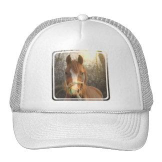 Chestnut Arab Horse Baseball Hat