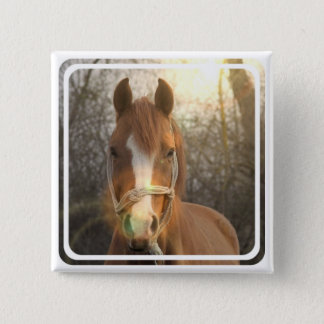 Chestnut Arab Horse Square Pin