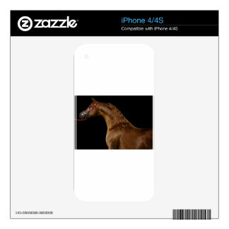 Chestnut Arabian Show Horse Skin For The iPhone 4S