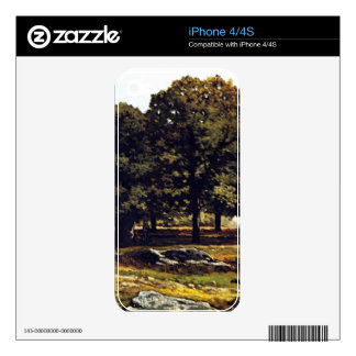 Chestnut Avenue in La Celle-Saint-Cloud by Sisley Skins For iPhone 4