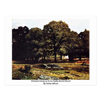 Chestnut Avenue In La Celle-Saint-Cloud Postcard