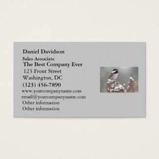 Chestnut Backed Chickadee in the Snow Business Card