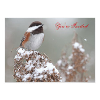 Chestnut Backed Chickadee in the Snow Card