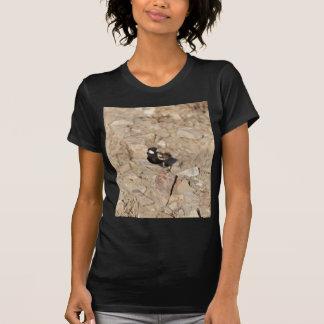 Chestnut backed sparrowlark (Eremopterix leucotis) T-Shirt