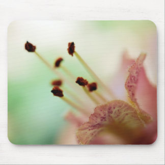 Chestnut blossom - Macrophotography Mouse Pad