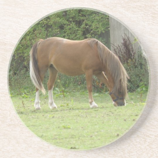 Chestnut Brown Horse Grazing Coasters