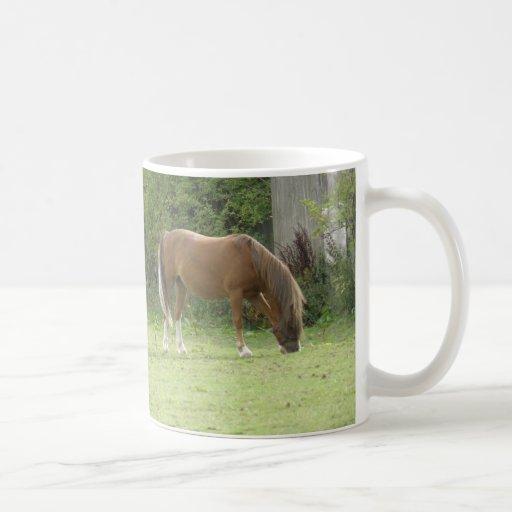 Chestnut Brown Horse Grazing Mug