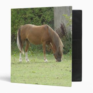 Chestnut Brown Horse Grazing Photograph Album 3 Ring Binder