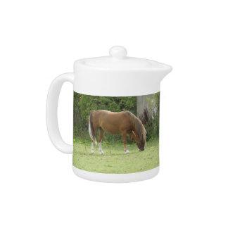 Chestnut Brown Horse Grazing Teapot