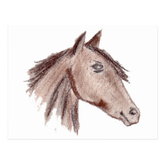 Chestnut Brown Horse Postcard