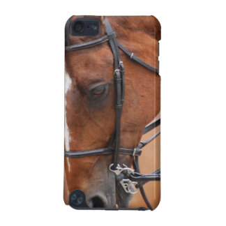 Chestnut Equine  iTouch Case iPod Touch 5G Cases