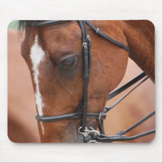 Chestnut Equine Mouse Pad