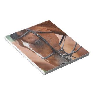 Chestnut Equine Notepad