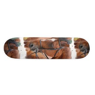 Chestnut Equine  Skateboard