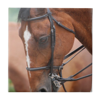 Chestnut Equine Tile