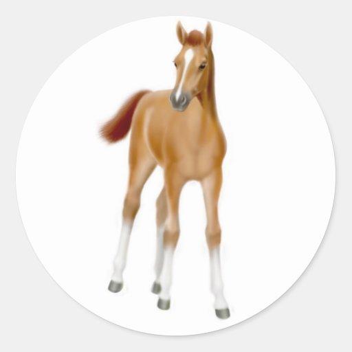 Chestnut Foal Sticker