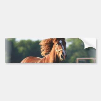 Chestnut Galloping Horse Bumper Sticker Car Bumper Sticker