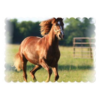 Chestnut Galloping Horse 5x7 Paper Invitation Card