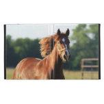 Chestnut Galloping Horse iPad Folio Cases