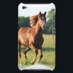 "Chestnut Galloping Horse iTouch Case<br><div class=""desc"">Chestnut horse galloping in a field.</div>"
