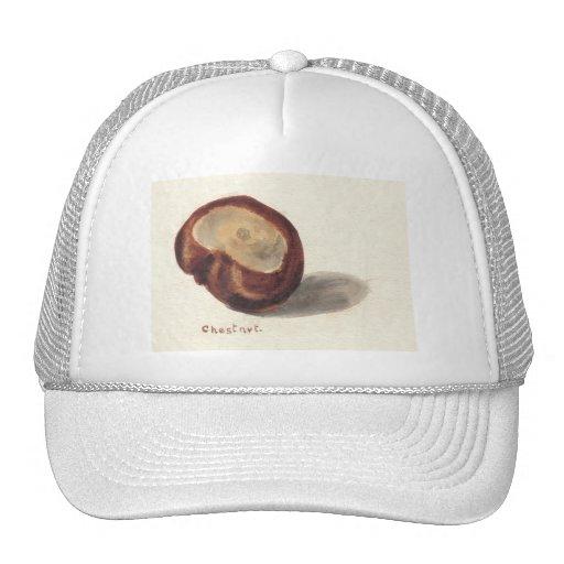 Chestnut Trucker Hat