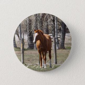 Chestnut Horse Button