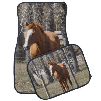 Brown Horse Car Floor Mats Zazzle