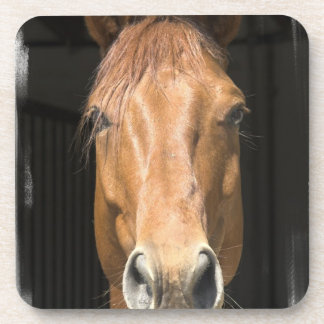 Chestnut Horse Cork Coasters