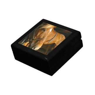 Chestnut Horse Design Gift Box