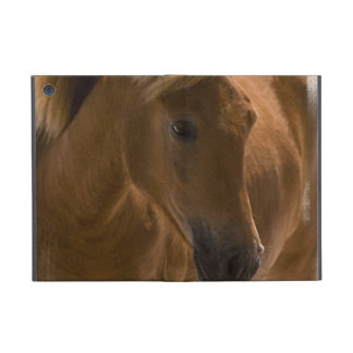 Chestnut Horse Design Cases For iPad Mini