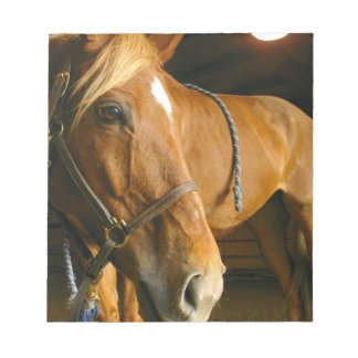 Chestnut Horse Design Notepad
