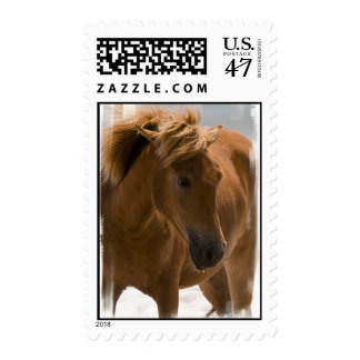 Chestnut Horse Design Postage