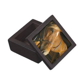 Chestnut Horse Design Premium Gift Box