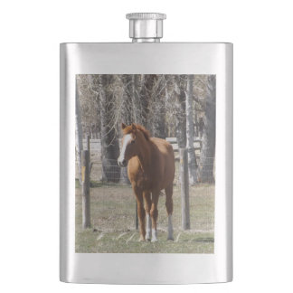 Chestnut Horse Flask