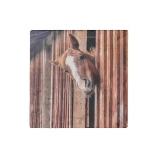 Chestnut Horse Friend & Barn, Horse-lovers Photo Stone Magnet