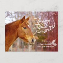 Chestnut Horse Holiday Photo Postcards