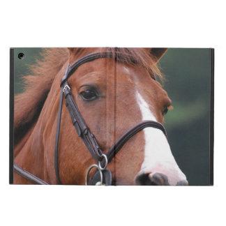 Chestnut Horse iPad Air Cases