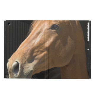 Chestnut Horse Cover For iPad Air