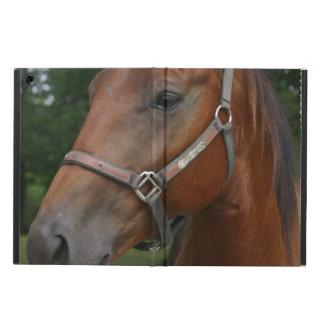 Chestnut Horse iPad Air Case