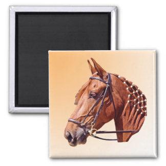 Chestnut Horse Refrigerator Magnets