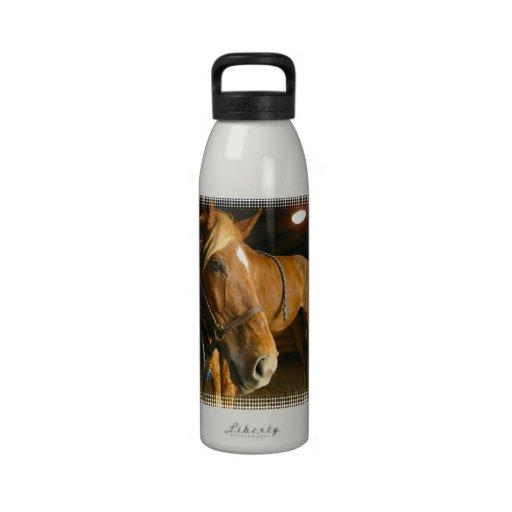 Chestnut Horse Photo Water Bottle