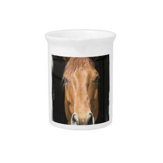 Chestnut Horse Pitcher