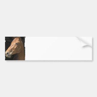 Chestnut Horse Profile Bumper Sticker Car Bumper Sticker